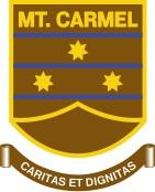 College of Mt. Carmel