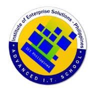 Institute of Enterprise Solutions